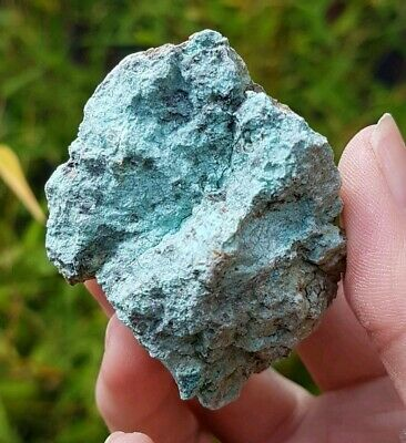 Raw Genuine Turquoise From 79 Mine Usa. Healing Crystal