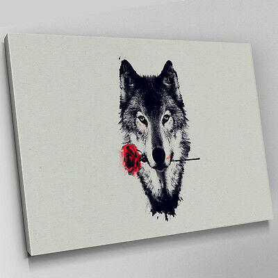 A466 Arctic Wolf Red Rose Abstract Canvas Wall Art Animal Picture Large Print
