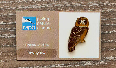 Rspb Giving Nature A Home British Wildlife Tawny Owl Charity Pin Badge On Card