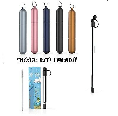 Reusable Stainless Steel Collapsible Telescopic Straws with Key chain Case