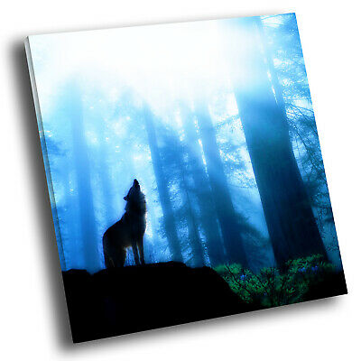 Square Animal Photo Canvas Small Wall Art Picture Prints Blue Black Forest Wolf