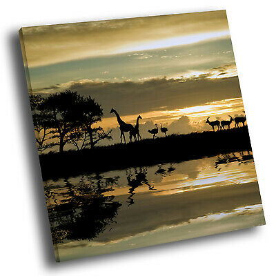 Square Animal Photo Canvas Wall Art Picture Prints Brown Africa Giraffe Blue