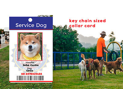 SERVICE ESA PTSD THERAPY DOG KEY OR COLLAR TAG Service Dog ID PICTURE Customized