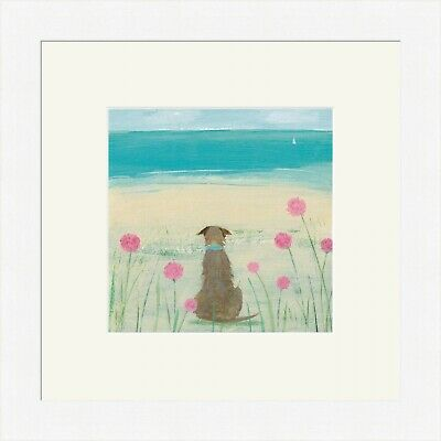 Sea Cabbages Framed Print  by Hannah Cole