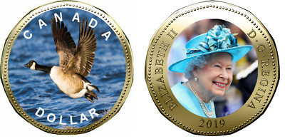 2019 Canadian legal Tender Coloured Loonie Coin