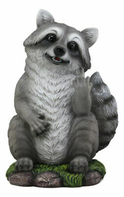 """Ebros Bad Bandit Cheeky Raccoon Flipping Off The Middle Finger Statue 12.5""""H"""
