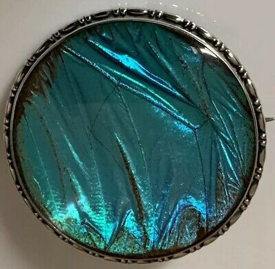 Antique Art Deco Large Hallmarked Solid Silver Blue Butterfly Wing Brooch