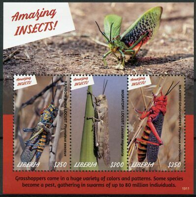 Liberia 2019 MNH Amazing Insects Locusts Grasshoppers 3v M/S Stamps