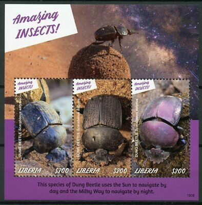 Liberia 2019 MNH Amazing Insects Dung Beetle 3v M/S Beetles Stamps