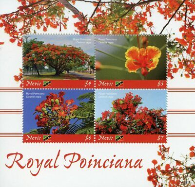 Nevis 2019 MNH Royal Poinciana Flame Tree 4v M/S Flowers Trees Nature Stamps