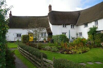 Thatched Devon Holiday Cottage. Christmas/New Year£595 other weeks from £345