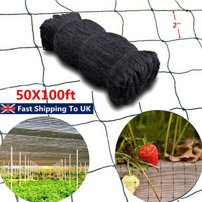 100'X50' Bird Protection Netting Knitted Black Fruit Cage Crops Pond Veg Garden
