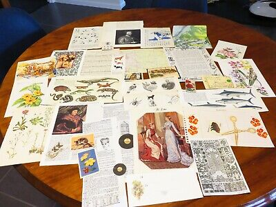 37pc ephemera vintage music theme book pages altered art, mixed media pk 3