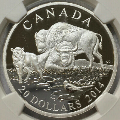 2014 S$20 Canada Bison at Rest, NGC PF70UC Early Releases