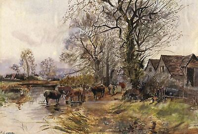E. Kennard, Cattle Drinking at River - Late 19th-century watercolour painting
