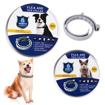 HOT Seresto Flea & Tick Collar for Small Dog Up to 18lbs 8 Month Protection