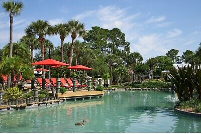 Wyndham Orlando International Resort 154,000 Annual Points