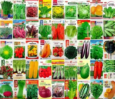 Hot sell Asia Vegetable seed Garden Chinese Retail package 原厂中文彩包春夏秋播蔬菜种子籽
