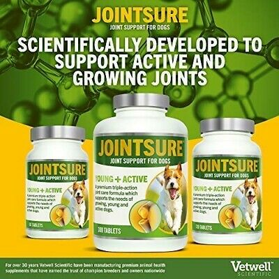 Joint Mobility Dog Supplement - 300 Tablets For Pain Relief, Arthritis