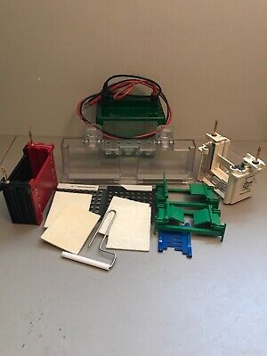 Lot Of Bio-Rad Mini Protean 3 Cell Gel Electrophoresis And Trans-blot System