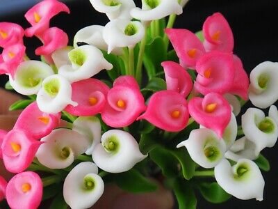 10 Pcs Miniature Handmade Clay Mixed Pink & White Calla Lily Flowers Decorative
