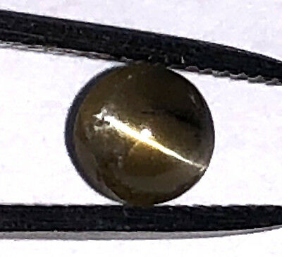 1.2 Ct Natural CATS EYE CHRYSOBERYL Loose Gemstone Round Cut Cabochon Gorgeous!
