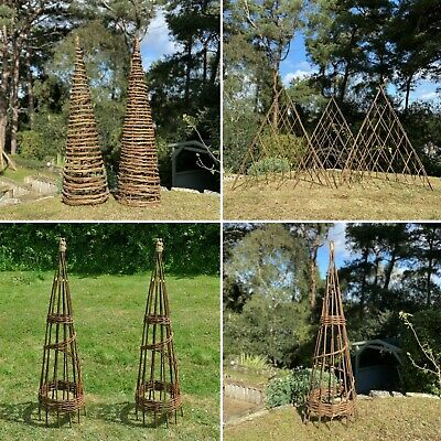Willow Garden Obelisks Wicker Wooden Wood Plant Support Plant Sticks Pea Bean