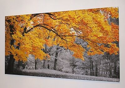 Gold Autumn Leaves Black And White Canvas Print Wall Art Picture  18 X 32 Inch