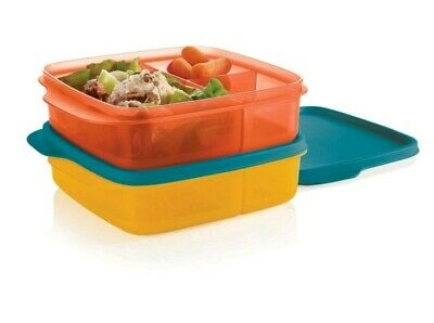 Tupperware Divided Lunch-It Containers Set of 2