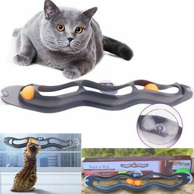 Fun Cat Pet Interactive Track Ball Toys Window Suction Mount Senses Toy