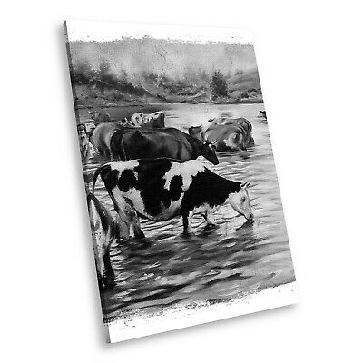 A651 Cows Funky Black White Animal Portrait Canvas Picture Print Small Wall Art