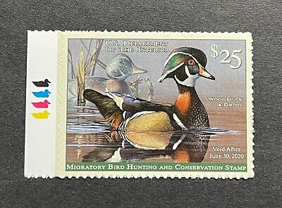 WTDstamps - #RW86 2019 - US Federal Duck Stamp **Scot Storm**  Mint OG NH