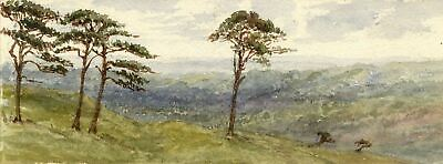 Emily Bruce, Savernake Forest from Martinsell Hill, Wiltshire - 1886 watercolour