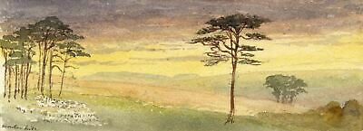 Emily Bruce, Sunset, Manton Hill, Marlborough - 1886 watercolour painting