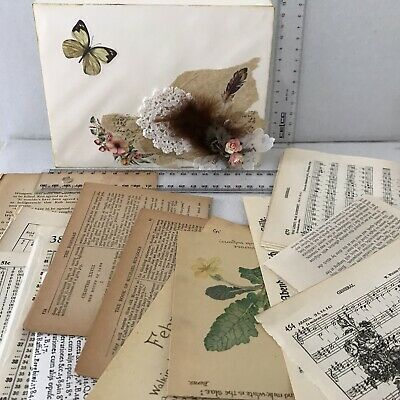 Junk Journal Decorated Envelope Paper Vintage Book Pages Incl Edith Holden Pages