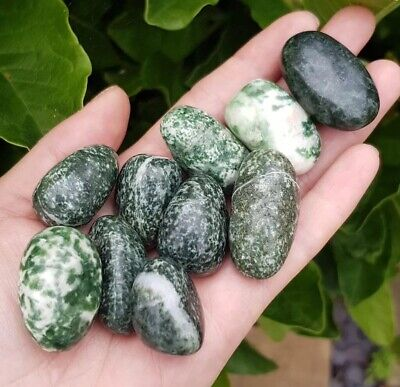Large Snake Dragon Jade Tumble Stones. Set Of 3. Sizes Vary. Healing Crystal