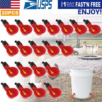10Pack Poultry Water Drinking Cups Chicken Hen Plastic Automatic Drinker WFN