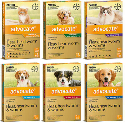1 Single Tube Advocate All Sizes Worm & Flea Treatment for Dogs and Cats