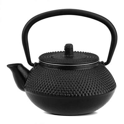 300ml Japanese Style Cast Iron Kettle Teapot+Removable Infuser/Strainer Tea Pot