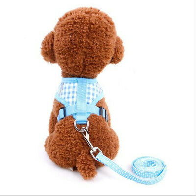 Fasgion Breathable Mesh Cat Dog Pet Harness Chest Strap Puppy Leads Leash Vest