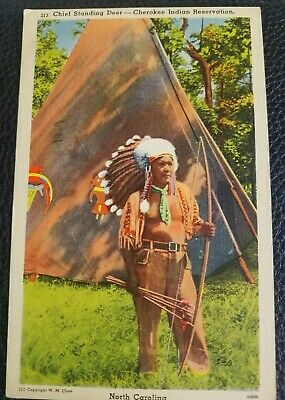Postcard Native American Chief Standing Deer Cherokee Indian Reservation NC