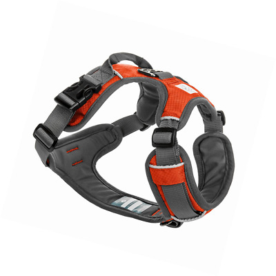 Embark Active Dog Harness, Easy On and Off with Front and Back Lead Attachments.