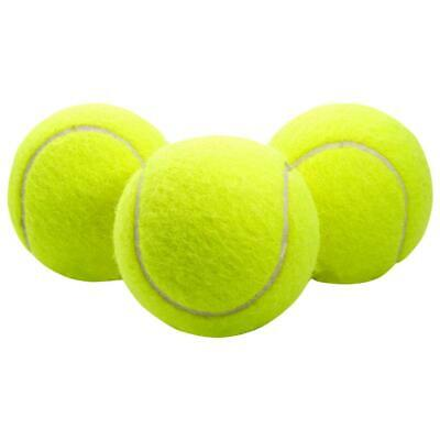 Rubber Pet Play Ball Toy Large Inflatable Puppy Tennis Ball Pet Dog Fun Toy Gift