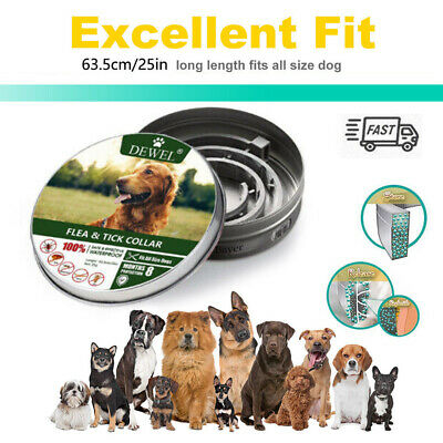 Dewel Flea & Tick Collar for Large/Small Dogs Up to 18lbs 8 Month Protection