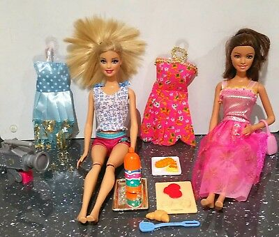Barbie Mattel Picnic Bundle Barbies And Accessories Big Bundle