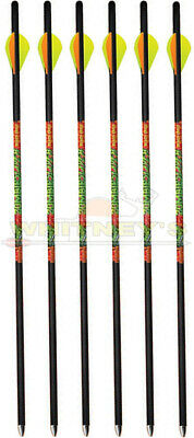 """Black Eagle Zombie Slayer Crossbow/Xbow Bolts .003 20"""" in 6 pack Half Dozen"""