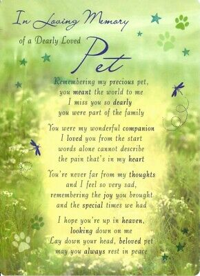 Grave Card DEARLY LOVED PET Memorial Funeral Graveside Cemetery💔