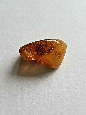 1.92 - Genuine Natural  Antique Old Baltic Amber Stone Bernstein polishing