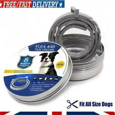 Flea and Tick Collar Protection Adjustable Small Medium Large Pets Water Resista