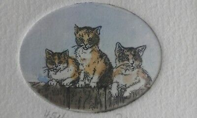 Etching of three kittens by Elizabeth Jan. Numbered.